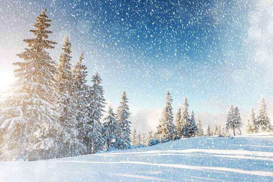 Schnee bindet Plastik-Partikel und verteilt sie in der Erdatmosphäre.