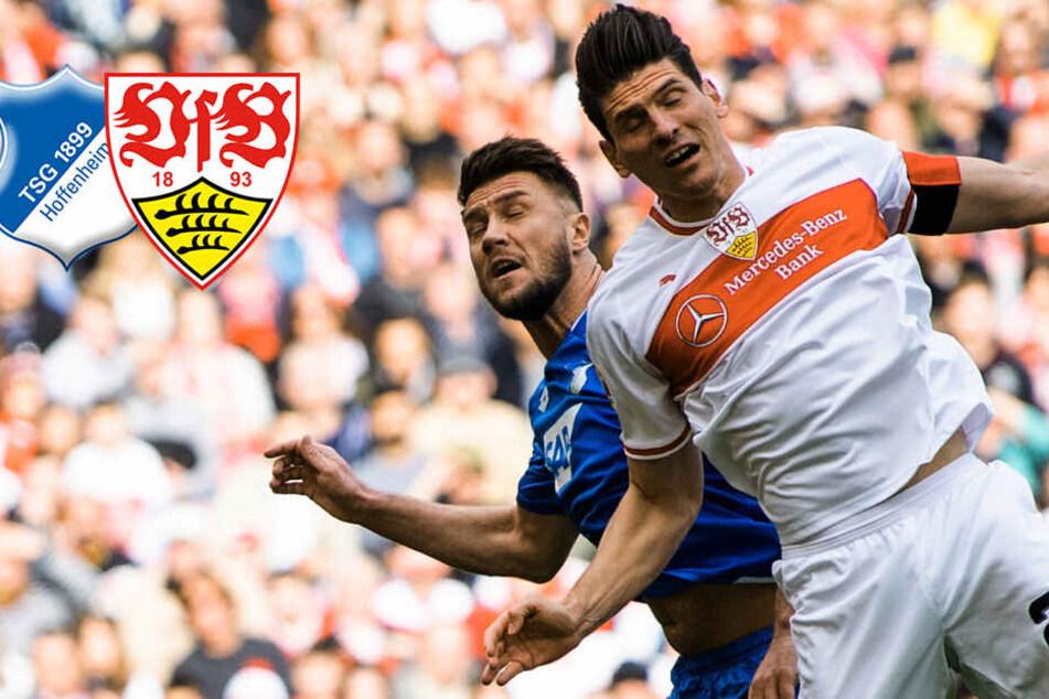 Packender Bundesliga-Fight! VfB Stuttgart und TSG teilen sich die Punkte