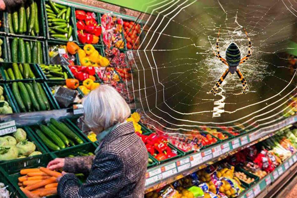 Spinnen-Kokons im Supermarkt entdeckt: Polizei macht Laden dicht