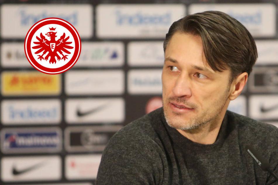 """""""Ein bisschen angeknackst"""": Rotiert Eintracht-Coach Kovac in Hamburg?"""