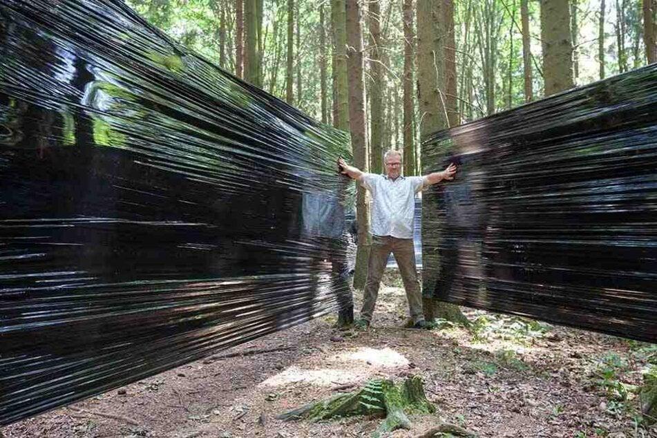 Dieser Märchenwald ist Sachsens verrücktester Irrgarten