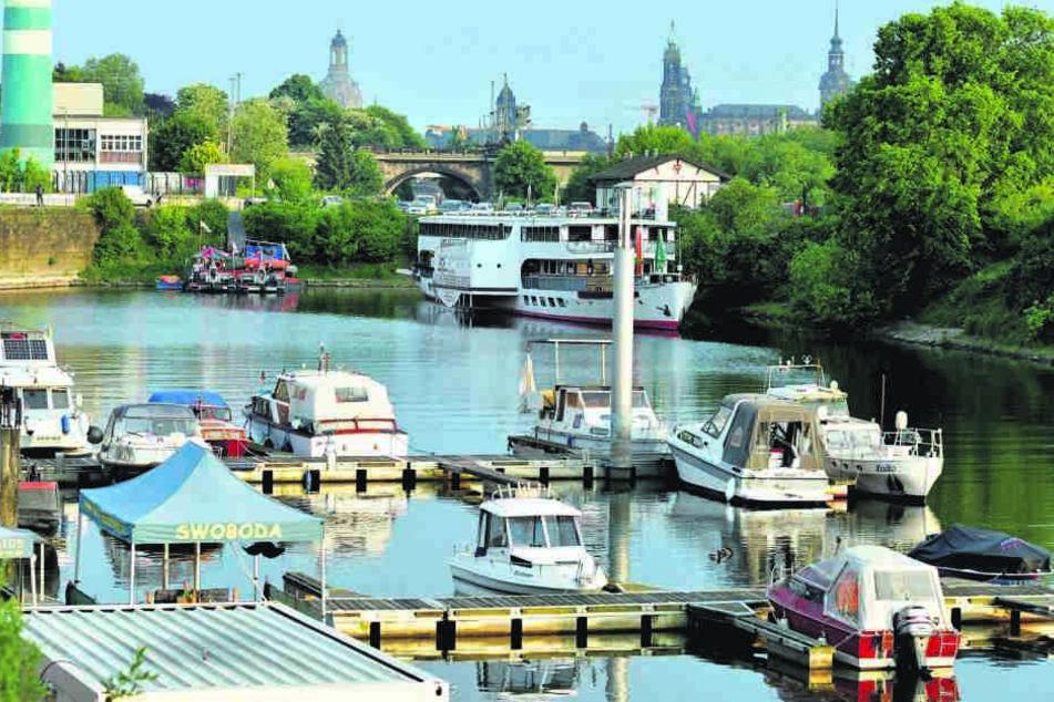Boote-Boom auf der Elbe: In Deutschland braucht man heute zum Führen von Motorbooten mit bis zu 15 PS Antriebsleistung keinen Boots-Führerschein.