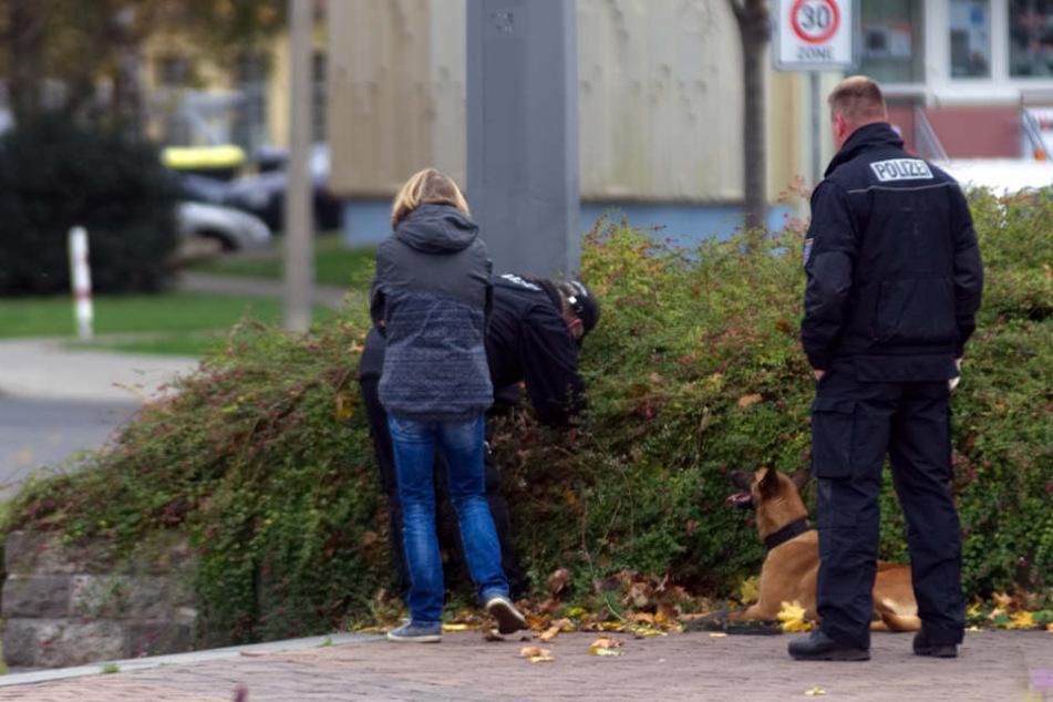 In einem Gebüsch sucht ein Polizist nach Hinweisen.