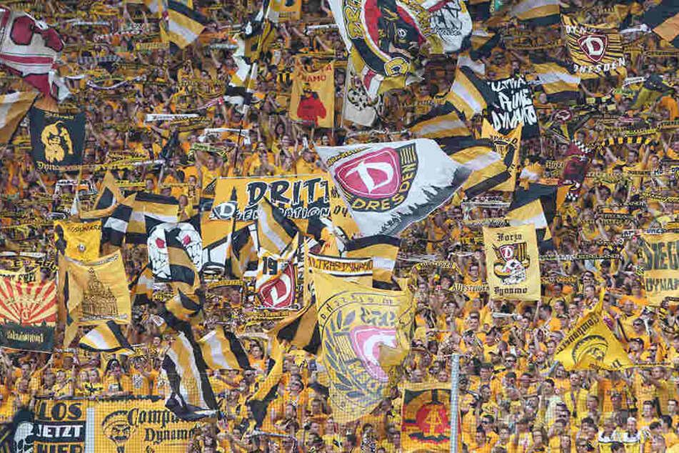 Die Fans von Dynamo Dresden werden im Spiel gegen Bielefeld alles geben.