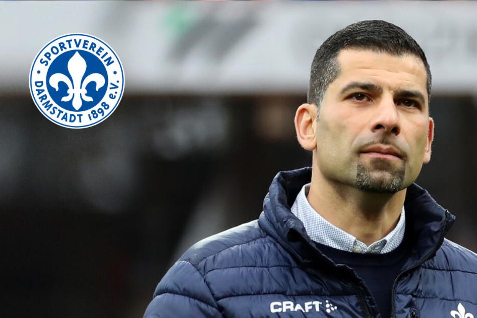 Trainer-Hammer in Darmstadt: Grammozis legt Amt zum Saisonende nieder