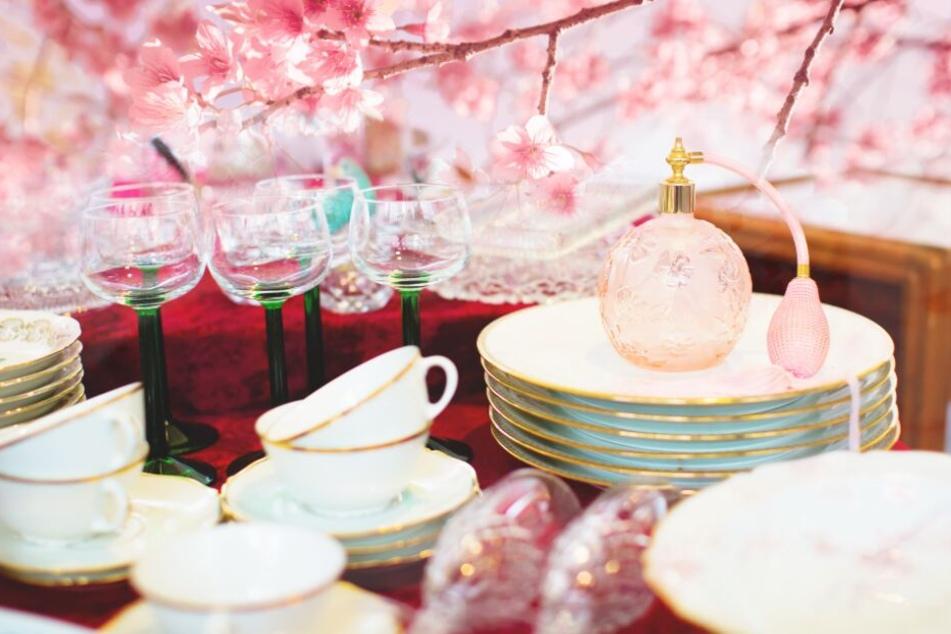 Von Kirschblüten bis Kiezklüngel: Diesen Sonntag gibt es viel zu erleben in OWL