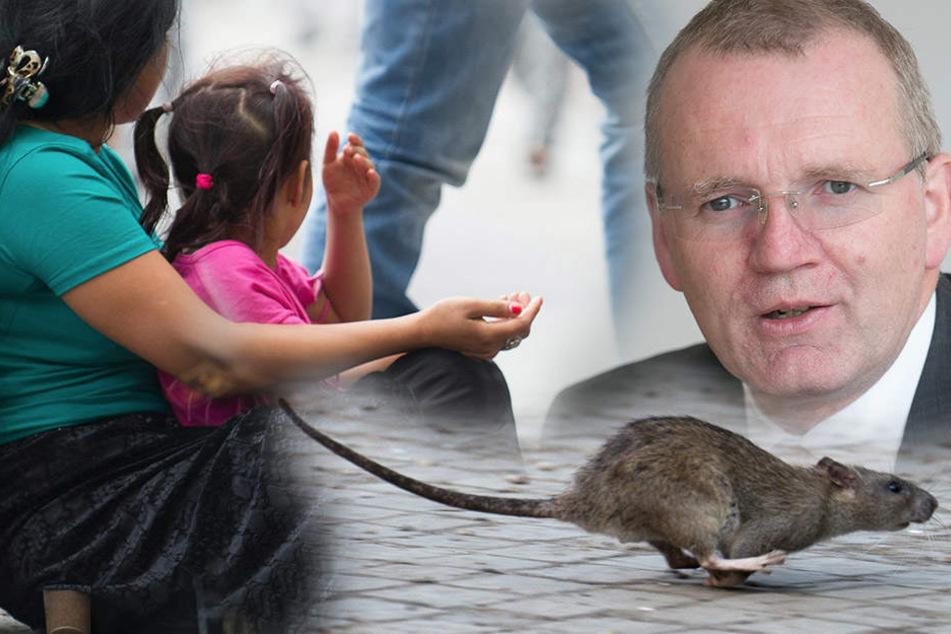 Kinderbetteln, Ratten füttern: Was bald noch in Dresden verboten werden soll