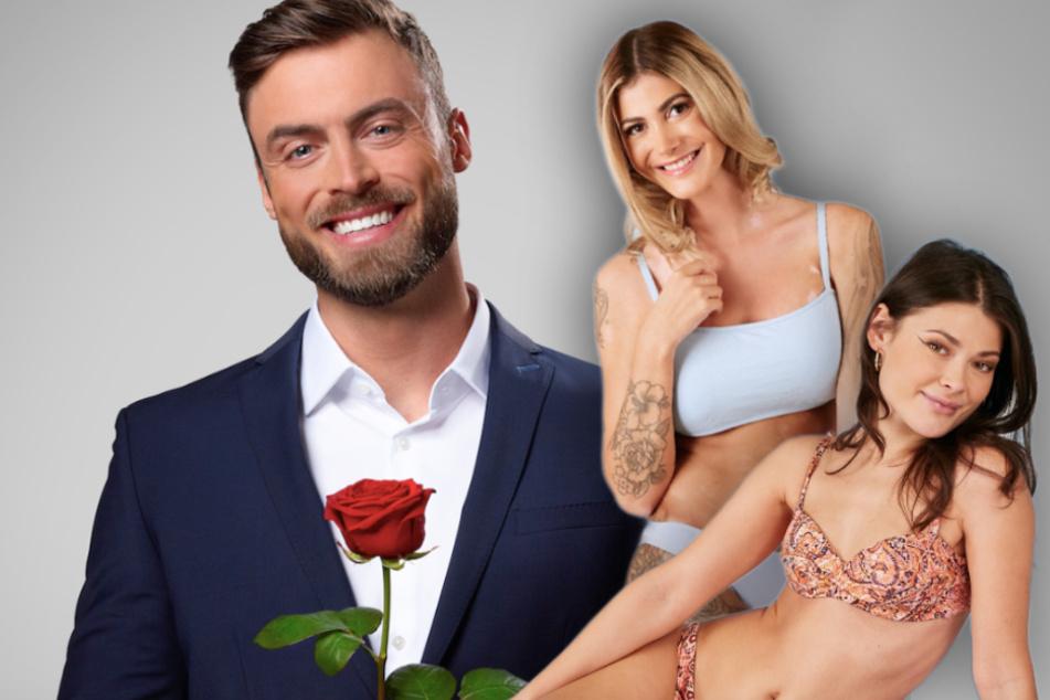 """Bachelor: """"Bachelor 2021"""": Diese heißen Münchnerinnen wollen den Rosenkavalier erobern"""
