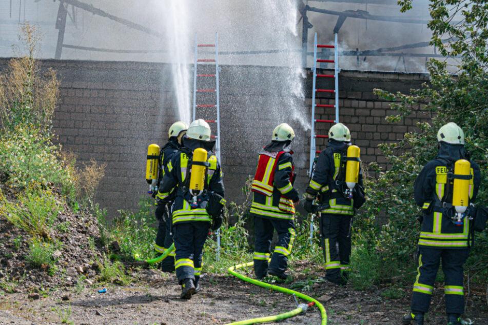 Etwa 100 Feuerwehrleute waren im Einsatz.