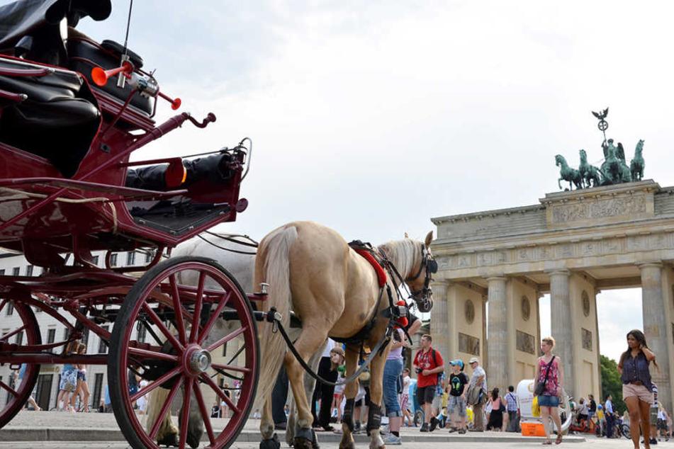 Bald Geschichte: Eine Pferdekutsche am Brandenburger Tor.