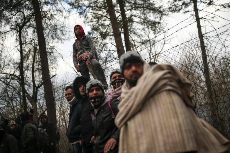 Griechenland hat seine Grenzen für die aus den Türkei kommenden syrischen Flüchtlinge geschlossen.