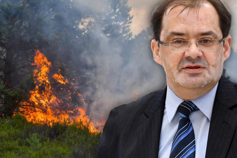 Für Brandenburg war es ein intensives Waldbrandjahr. (Bildmontage)