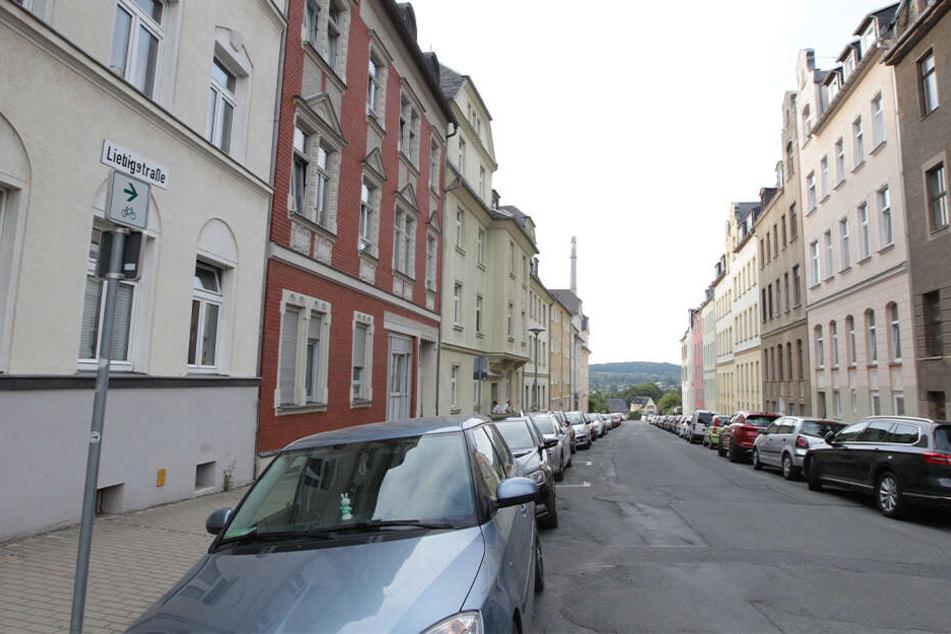 Die Liebigstraße in Plauen wirkt idyllisch, doch hier wurde ein Mann (59) schwer verletzt.