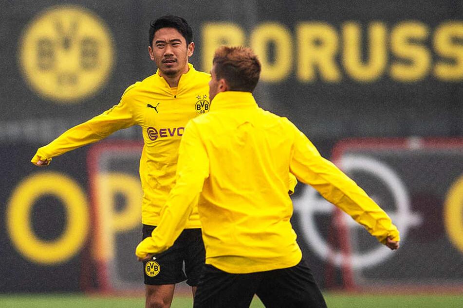 Shinji Kagawa (l.) steht aus rein sportlicher Sicht und trotz aller Verdienste beim BVB auf dem Abstellgleis.