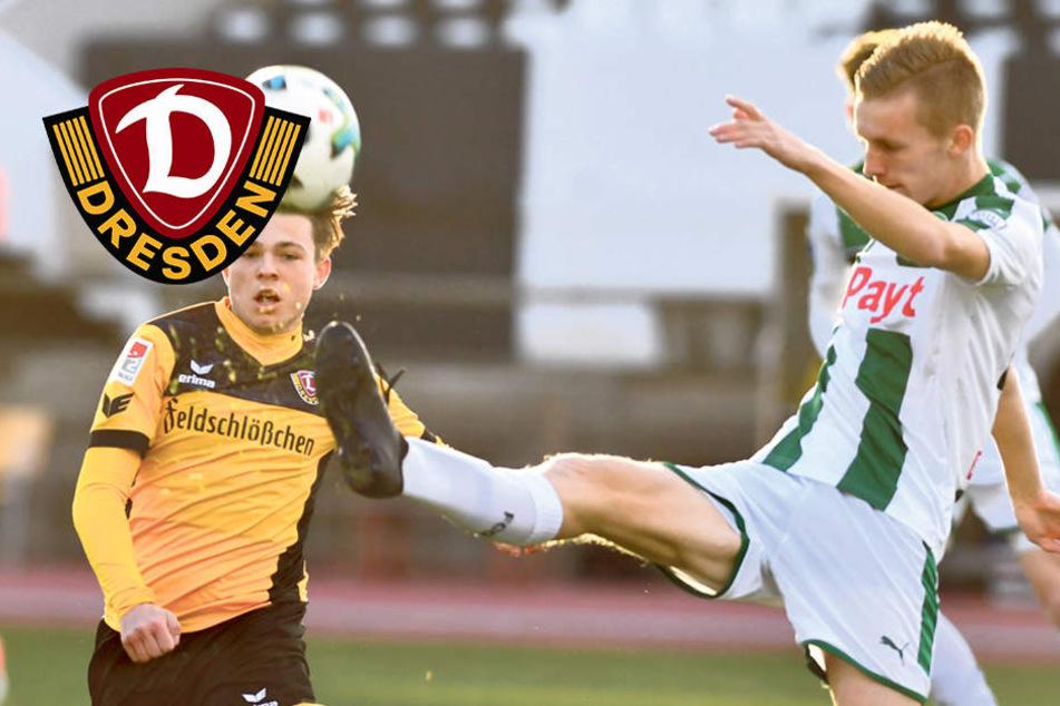 """3:1 gegen Groningen! Müde Dynamos siegen im Schatten des """"Affenfelsens"""""""