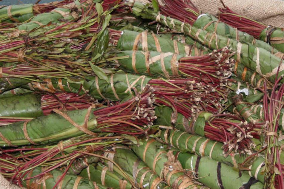 In den vier Paketen befanden sich insgesamt 64 Kilogramm Blätter der Khat-Pflanze.
