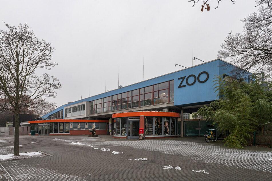 Noch ist der Dresdner Zoo für Besucher geschlossen.
