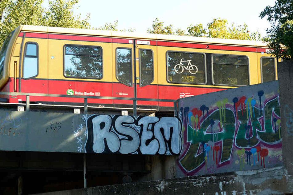 Gleise und Böschungen werden gesäubert sowie Graffiti entfernt. Bis Herbst 2017 soll alles im neuem Glanze erstrahlen. (Symbolbild)