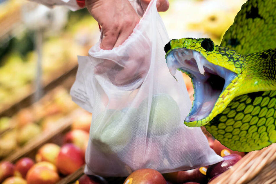 Frau wird in Supermarkt von Schlange gebissen, doch das Tier ist verschwunden