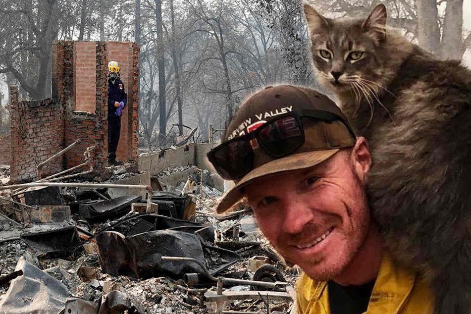 Tierisch! Feuerwehrmann rettet Katze aus Flammenhölle