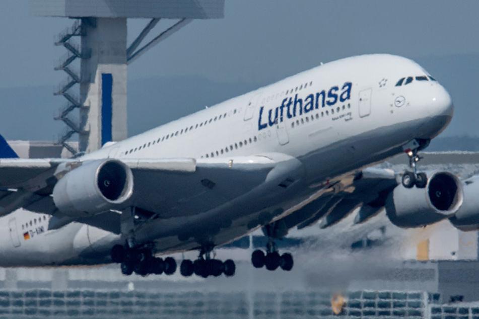 Seltsamer Geruch: Lufthansa-Maschine muss zwischenlanden