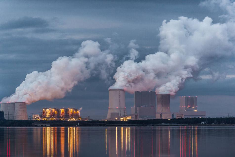 Braunkohlekraftwerk Boxberg: Die ersten Blöcke gehen hier 2029 vom Netz - der Abschalt-Zeitplan steht.