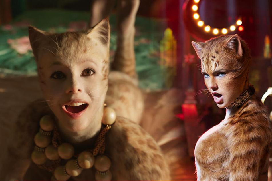 Victoria (l., Francesca Hayward) und Bombalurina (Taylor Swift) haben ebenfalls ihre Auftritte.