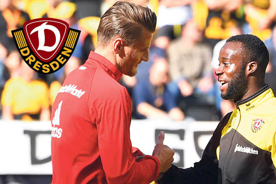 Dynamo-Stürmer Berko trifft morgen auf seinen Kumpel Kutschke
