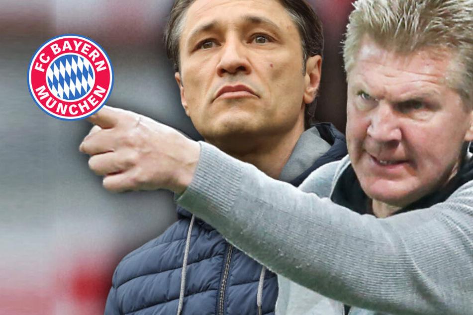 """Es ist traurig"": Stefan Effenberg kritisiert Bayern-Bosse wegen Niko Kovac"