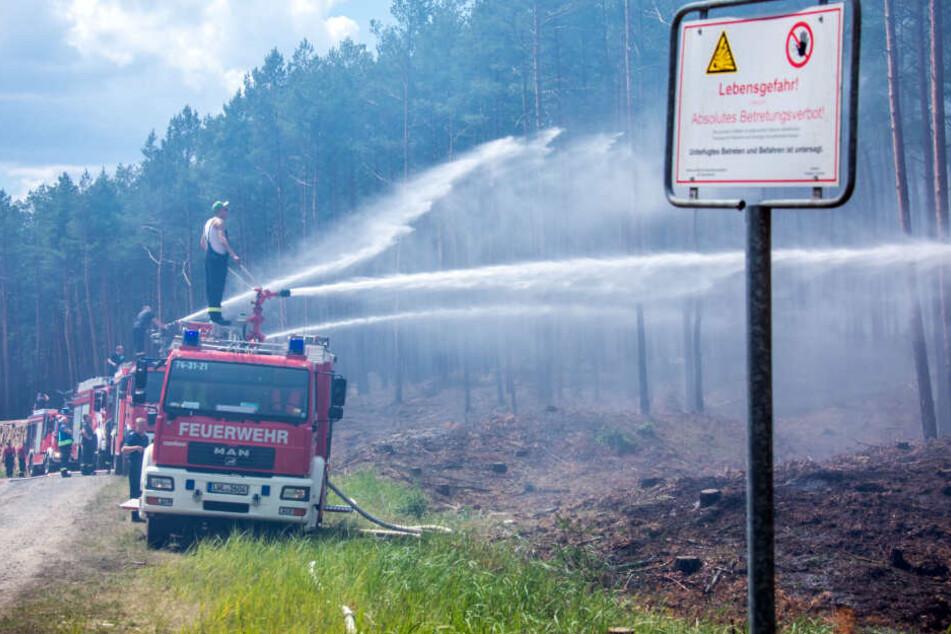 Die Einsatzkräfte bekämpfen den Waldbrand.