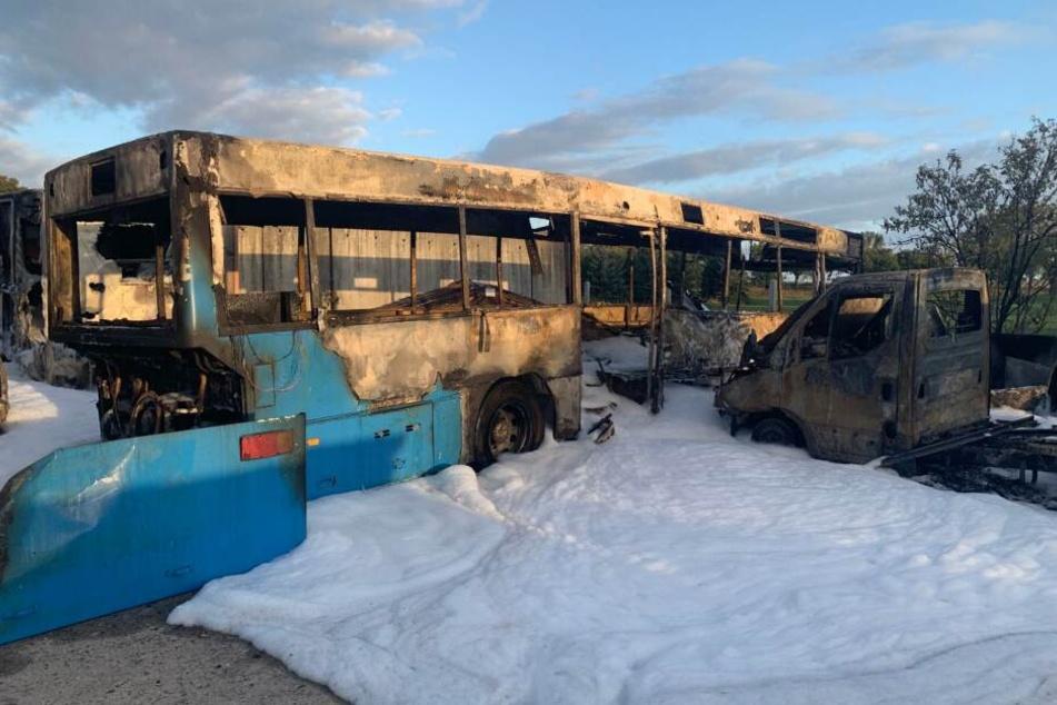 Brand-Anschlag auf AfD-Politiker Aßmann: Mehrere Fahrzeuge in Flammen