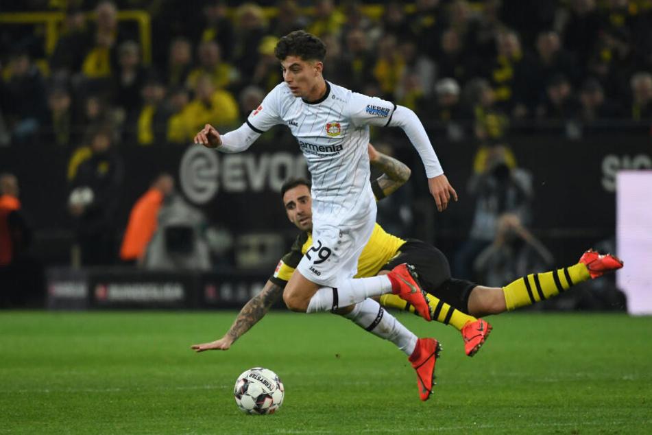 Paco Alcacer von Dortmund und Kai Havertz (r) von Leverkusen im Zweikampf.