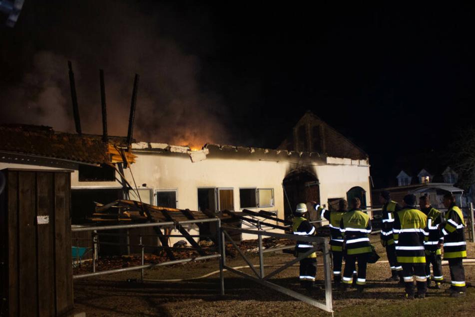 Der Reitstall brannte komplett nieder, die Pferde konnten gerettet werden.
