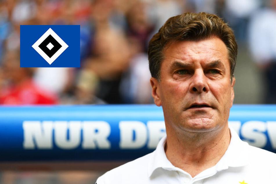 Deftige Testspielpleite: HSV blamiert sich beim VfB Lübeck!