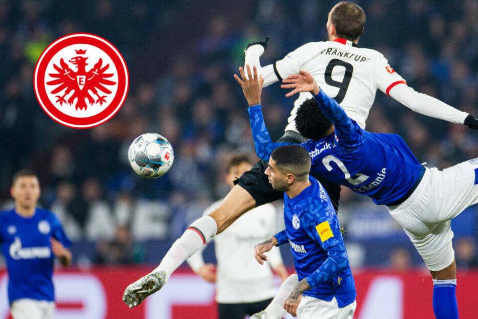 Niederlage in Überzahl: Eintracht kann auch auf Schalke keinen Punkt mitnehmen