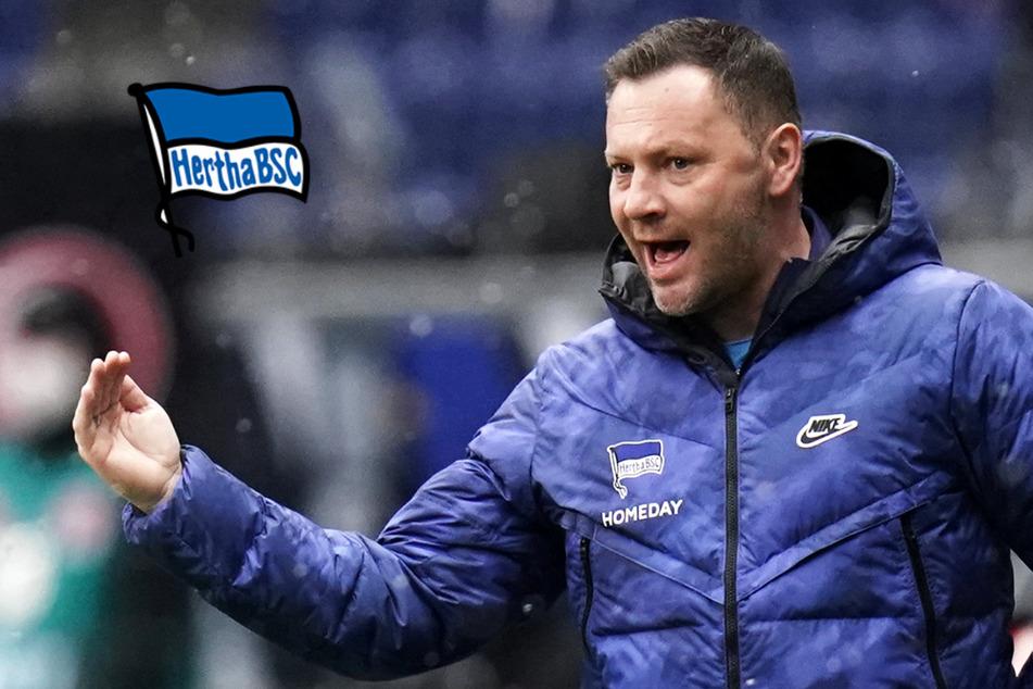 """Hertha-Coach Dardai on fire: """"Wir sind die ganze Woche nur gehüpft, sogar zum Essen"""""""