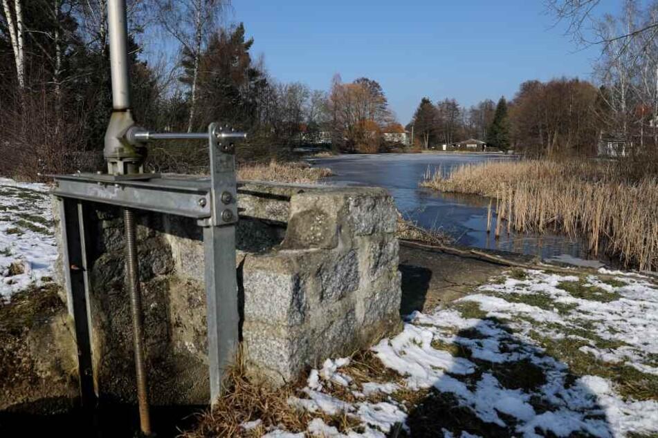 Unbekannte ließen jetzt den Karpfenteich in Weixdorf ab.