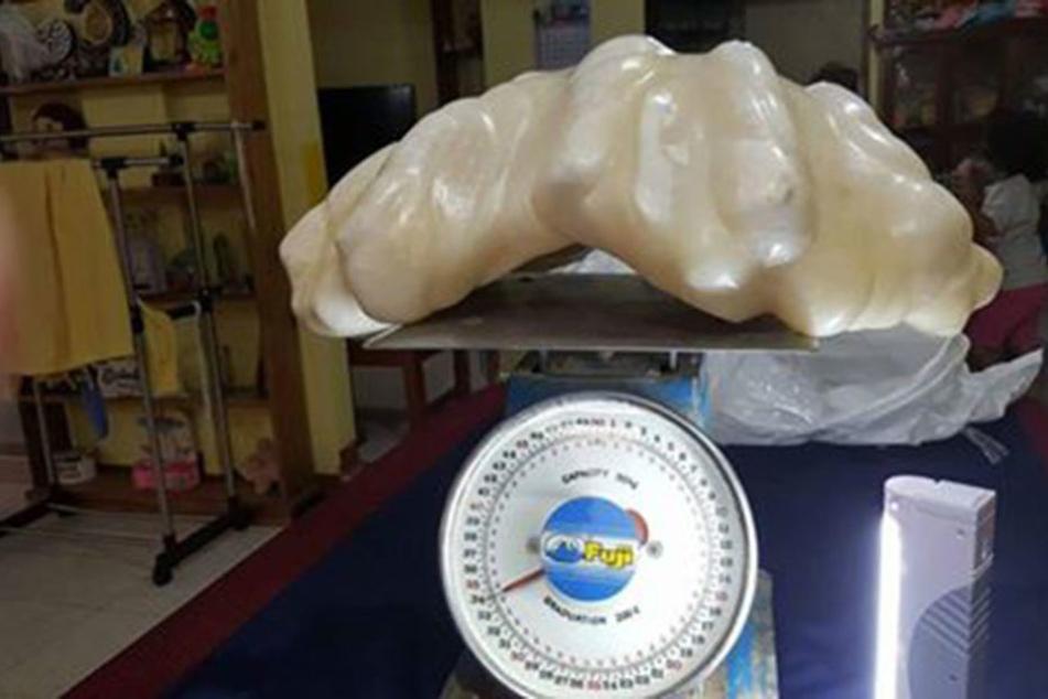 Fischer findet 100-Mio-Euro-Perle und lässt sie zehn Jahre unterm Bett liegen