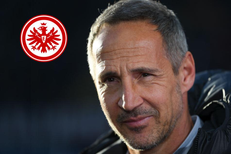 Spannung steigt: Eintracht vor Schlüsselspiel in Leipzig