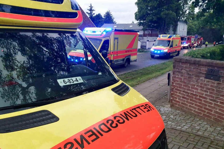 Bei einer Sommerparty der Zeugen Jehovas in Oranienburg wurden 11 Personen durch herabfallende Äste verletzt.