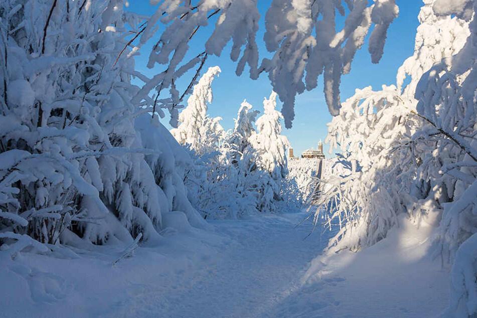 Winter auf dem Fichtelberg ist normal, aber wie kalt trifft uns der Winter 2016/2017?