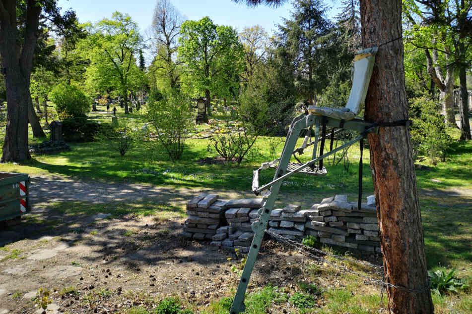 Auf diesem Friedhofshochsitz legt sich der Jäger außerhalb der Schonzeiten auf die Lauer.