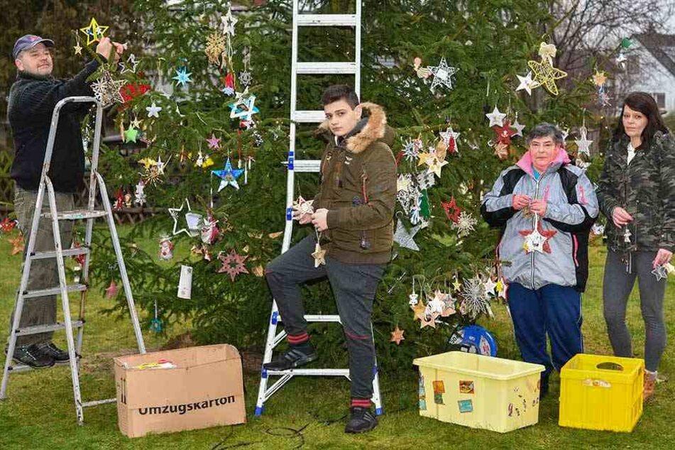 Die ganze Familie hilft Timo beim Aufhängern er vielen Weihnachtsgrüße an der sieben Meter hohen Tanne.