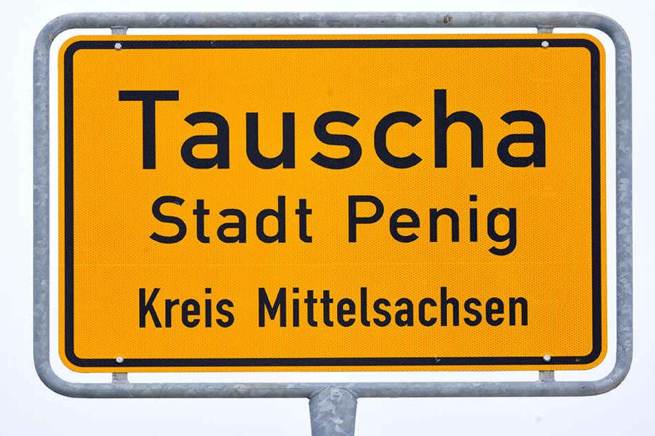 Die Bürger aus Tauscha wollen keine Hochspannungsleitung in ihrem Dorf.