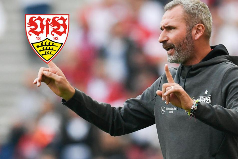 VfB Stuttgart in der Mini-Krise: Rotiert Trainer Tim Walter zu viel?