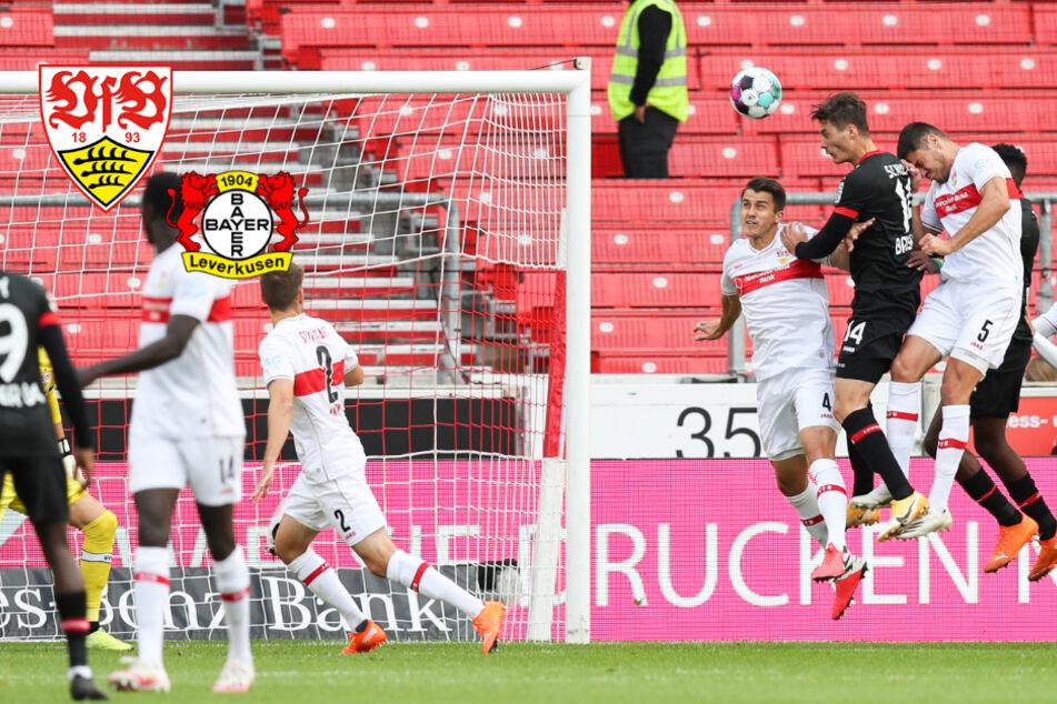 VfB Stuttgart belohnt sich für starken Auftritt gegen Bayer 04 Leverkusen
