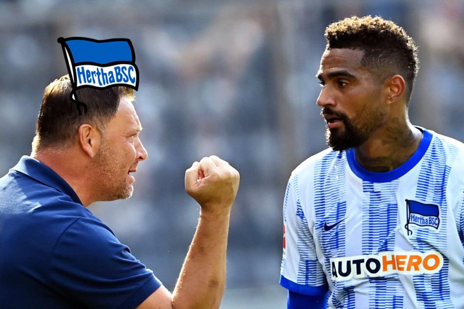 Hertha-Training eskaliert: Kevin-Prince Boateng blafft Pal Dardai an