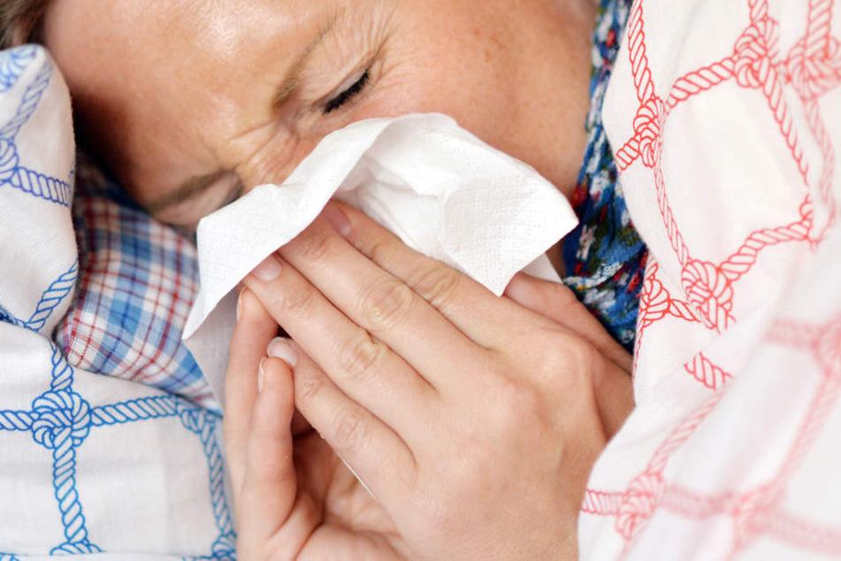 Anzeichen einer Grippe sind Schnupfen, Fieber und Heiserkeit.