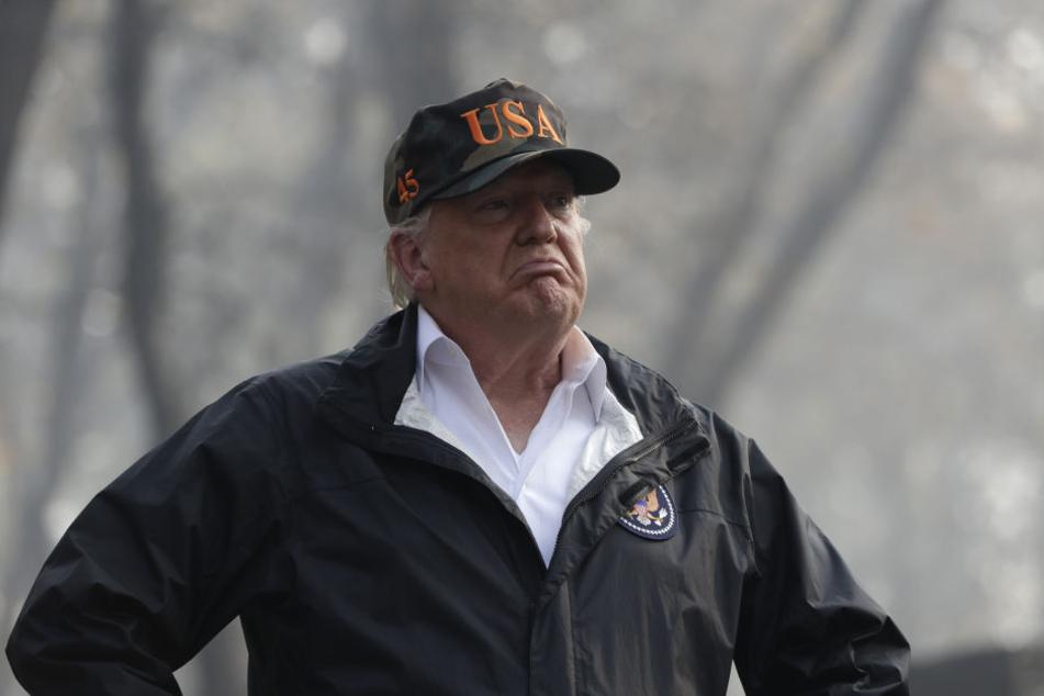 Donald Trump äußerte sich sehr fragwürdig zu den Waldbränden in Kalifornien.