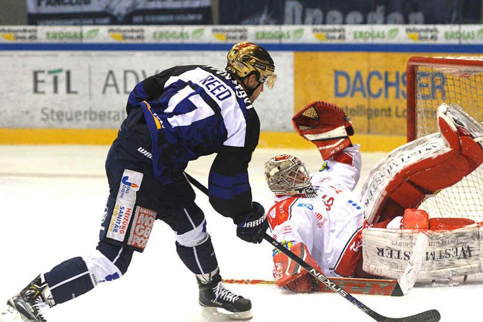 Szene aus der Pre-Play-off-Serie 2016 zwischen Dresden und Crimmitschau: Eislöwe Harrison Reed scheitert an Eispiraten-Goalie Ryan Nie.